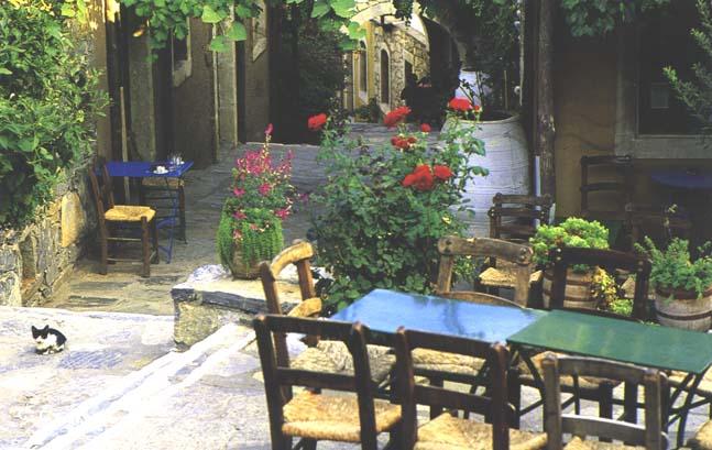 http://webgrece.free.fr/images/chats/postcards/2.jpg