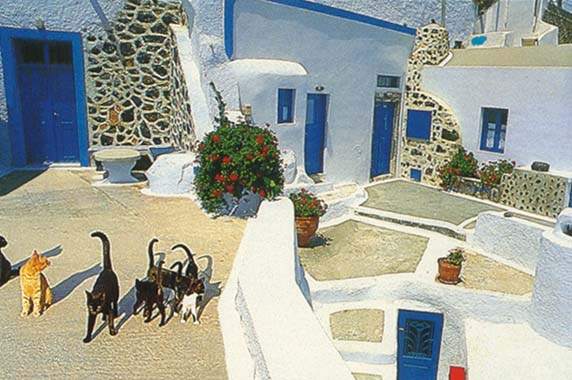 http://webgrece.free.fr/images/chats/postcards/carte_chats_cours.jpg