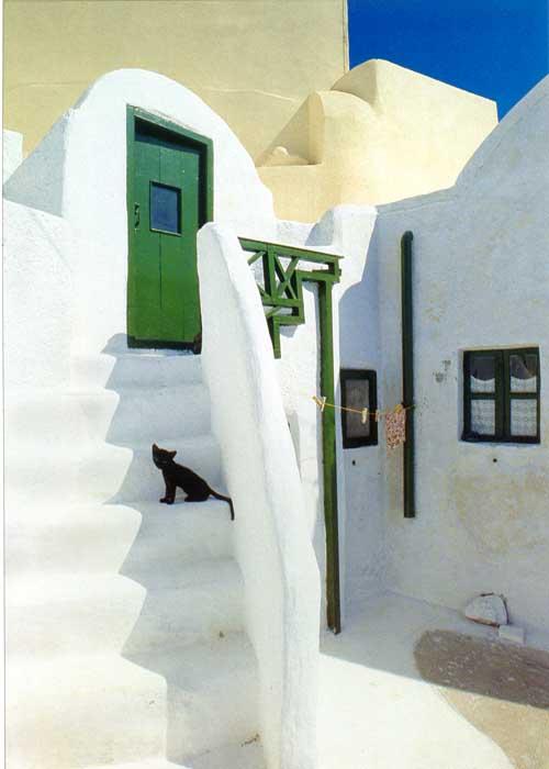 http://webgrece.free.fr/images/chats/postcards/chaton_noir_escalier.jpg